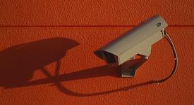 Online Brand Management: Brand Protection Basics
